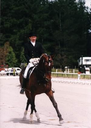 Viggo's Horse - 300x422, 15kB