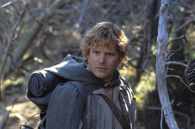 Sam In Ithilien - 800x532, 81kB