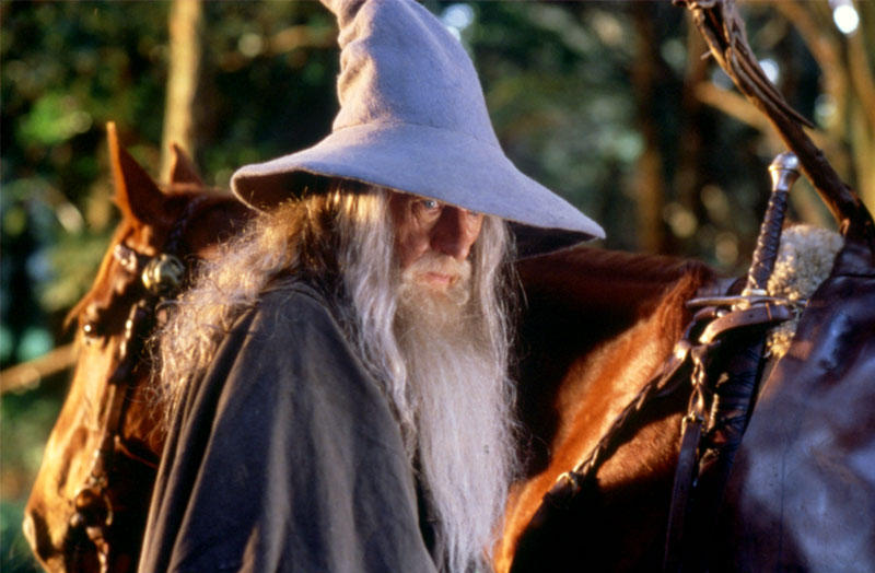 Gandalf the Grey - Cannes 2001 Slide - 800x524, 85kB