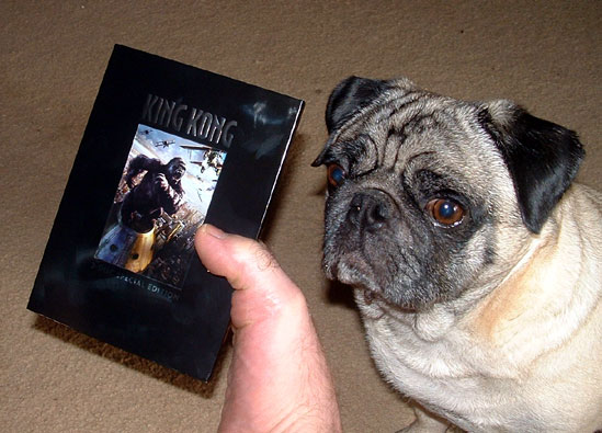 King Kong Fan with their DVD - 549x395, 60kB