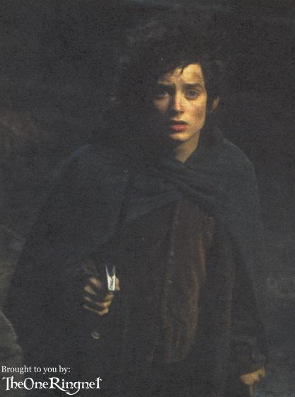 Frodo faces the Nazgul - 417x561, 24kB