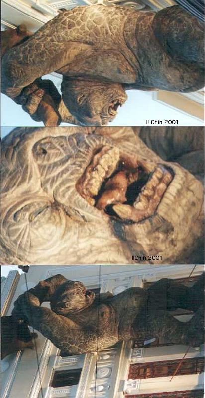 Cave Troll At Dawn - 412x800, 64kB