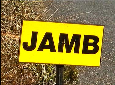 Jamboree ... This Way - 376x278, 39kB