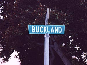 Lord of the Rings Street Names: Buckland - 300x225, 20kB
