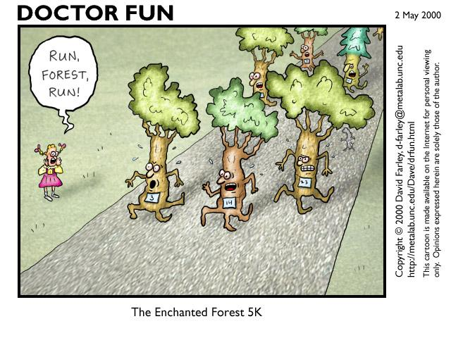 The Enchanted Forest 5K - 640x480, 70kB