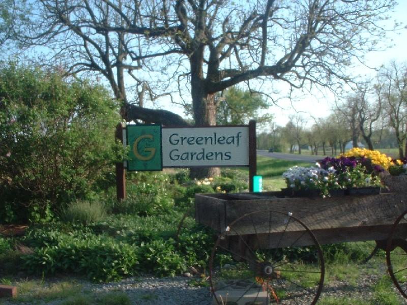 Greenleaf Gardens - 800x600, 180kB