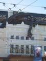 Wellington Premiere Pictures - (600x800, 45kB)