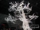 The White Tree - (800x600, 129kB)