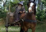 Close-Up: Gandalf Rides into Hobbiton - (800x567, 149kB)