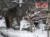 Narnia In Winter Images - (390x293, 24kB)