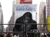 King Kong Premiere: New York, New York - (800x600, 104kB)