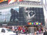 King Kong Premiere: New York, New York - (800x600, 145kB)