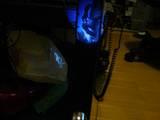Japanese Movie Goodies: Kong Flashlight - (640x480, 32kB)