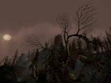 New 'Siege of Mirkwood' Screenshots - (672x504, 250kB)