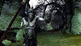 New Screens for Lord of the Rings Online: Siege of Mirkwood, Digital Expansion - (800x460, 155kB)