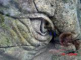 A stone troll up real close - (800x600, 213kB)