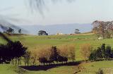 Hobbiton: Panoramic Shot - (426x282, 70kB)