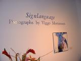 Sign Language - Photographs by Viggo Mortensen - (800x600, 303kB)