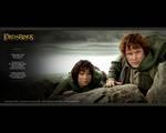Frodo And Sam Wallpaper From TTT DAK - (800x640, 70kB)