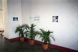 Viggo Mortensen in Cuba - (768x512, 196kB)
