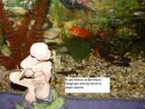 Joe Keegan's Smeagol statue - (800x600, 129kB)