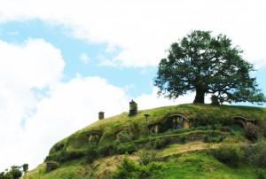 Hobbiton, Bilbo's House