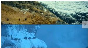 Total Film Comparison