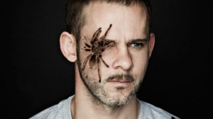 DominicMonaghan_Spider_640x360