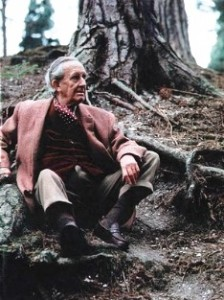 Tolkien sitting under his favourite tree Pinus nigra