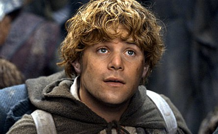 Image result for samwise