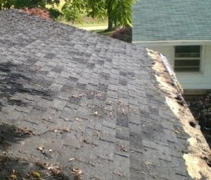 garage roof 07