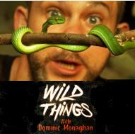 Wild Things Dom Monaghan season 2