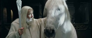Blanco, horse that played Shadowfax in The Lord of the Rings.