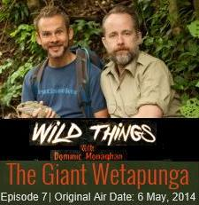 Dom and Billy on Wild Things
