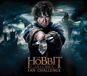 fan challenge