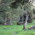 Close-up: Hobbit set on South Island