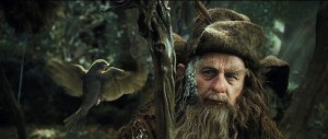 Radagast the Brown communes with a bird