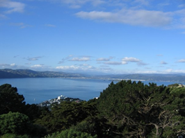 Number 4: Wellington and Environs - Wellington Harbor from Mount Victoria. Get off the road.